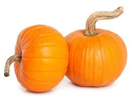 pie pumpkins